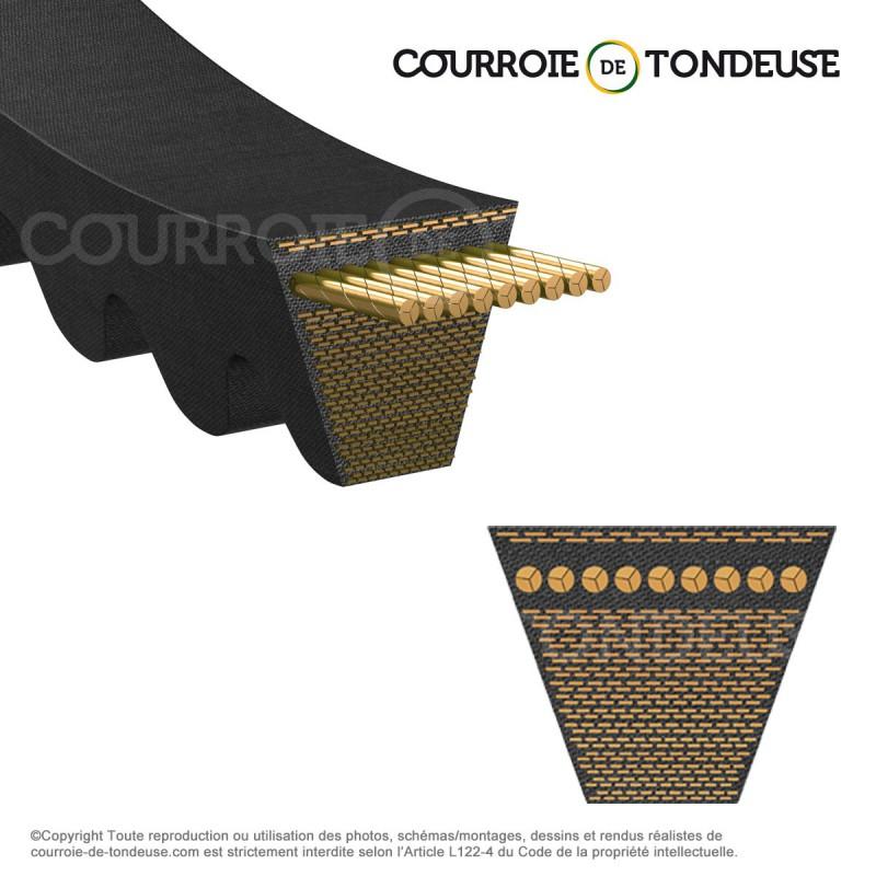 courroie de tondeuse 22x435c courroie de tondeuse. Black Bedroom Furniture Sets. Home Design Ideas