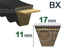 Nos modèles de Courroie Crantée tondeuse - BX
